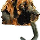 The Dog Ate A Cat by Leonard  Zinovyev