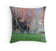 Autumn Roos  Throw Pillow