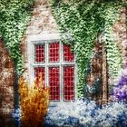 Colorful Castle Garden - Infrared Series by Jane Neill-Hancock