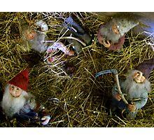 Christmas Elves Photographic Print