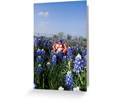 Earth, I like this place. Greeting Card