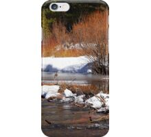 Willow on the Edge of the Bank iPhone Case/Skin