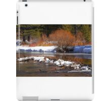 Willow on the Edge of the Bank iPad Case/Skin