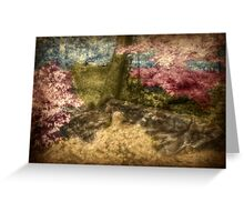 A Walk In The Mystical Woods - Infrared Series Greeting Card