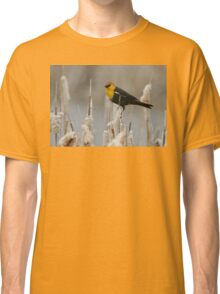 Yellow Headed Blackbird Classic T-Shirt