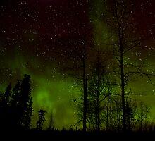 Jan 31/09..Morning Auroras by peaceofthenorth