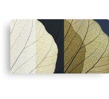 The leaf:composition1 Canvas Print