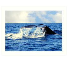 A Whales Tail...  Art Print