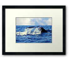 A Whales Tail...  Framed Print