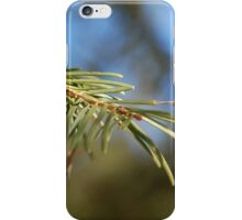 Branch of a White Fir iPhone Case/Skin
