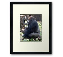 Reprieved Framed Print