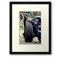 Chimp Swing Framed Print