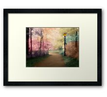 A Walk In The Park - Infrared Series Framed Print