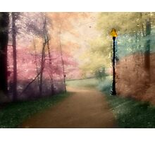 A Walk In The Park - Infrared Series Photographic Print