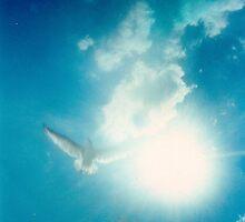 BLUE SKIES by ROXANNE MORELLA