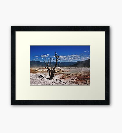 Mammoth Hot Springs Framed Print