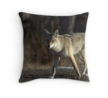 The Coyote Project, Act IV, Scene ii Throw Pillow