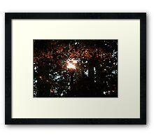 Finding the Street Lamp Among the Leaves Framed Print