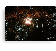 Finding the Street Lamp Among the Leaves Canvas Print