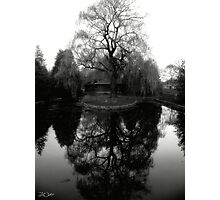 Reflecting Willow Black&White Photographic Print
