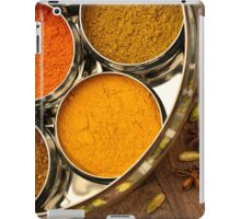 Colourful Orange Yellow Kitchen Chef Silver Indian Spices Pots iPad Case/Skin