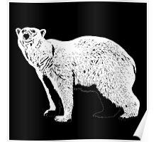The Last Polar Bear Poster
