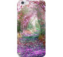 Secret Garden - Home of the Fairies iPhone Case/Skin
