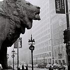 Art Institute Lion - Chicago, IL by Eric Cook