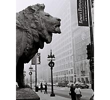 Art Institute Lion - Chicago, IL Photographic Print