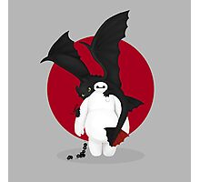 baymax and toothless Photographic Print