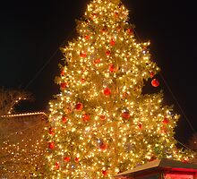 Downtown Christmas Tree by Brian Humek