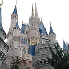 Cinderella Castle by LenaHunt