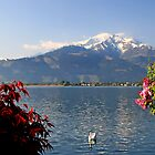 Zell am See view by Gyuri Nagy