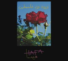 Rose from Palestine by Hudda