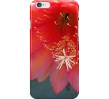 Retro Pink and Orange with Fluff and Stuff iPhone Case/Skin