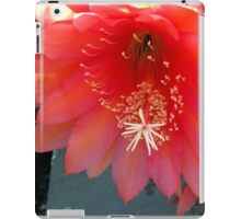 Retro Pink and Orange with Fluff and Stuff iPad Case/Skin