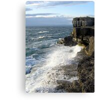 Westerly winds Canvas Print