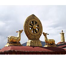 The Dharma Wheel Photographic Print