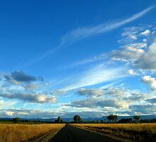 The Road to Carnarvon National Park by Marilyn Harris