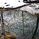 ditch Water Reflections by martinilogic
