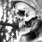 Portrait of a Skull by TriciaDanby