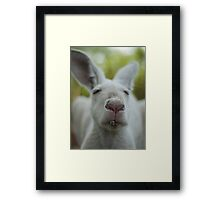 Smokin'! Framed Print
