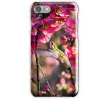Reds & Greens of spring iPhone Case/Skin