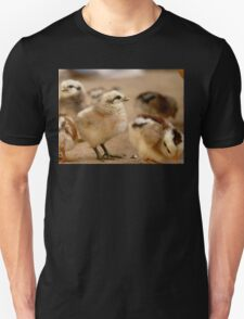 This Eyeliner is Great - Baby Chicks Unisex T-Shirt