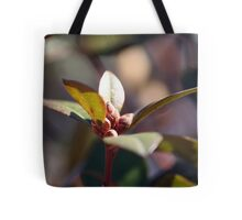 Signs of Spring - 4 Tote Bag