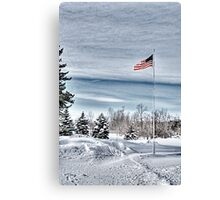 Flying proud in the freezing wind Canvas Print