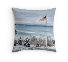 Flying proud in the freezing wind Throw Pillow