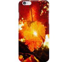 Ray of Sun Through Stunning Fall Foliage  iPhone Case/Skin
