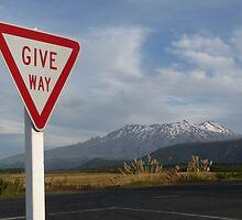 Mt Ruapehu  by Virginiaen