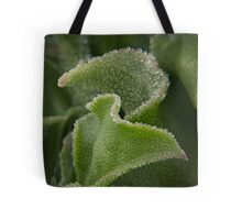 Icicle Ice Plant 1 Tote Bag